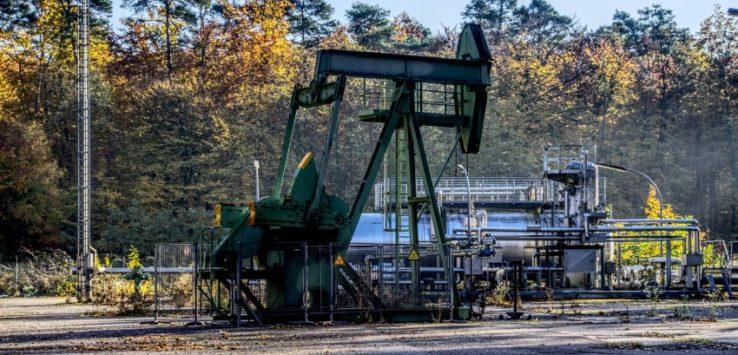 surova nafta